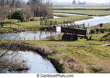 Rural scene with pastures and an old waggon