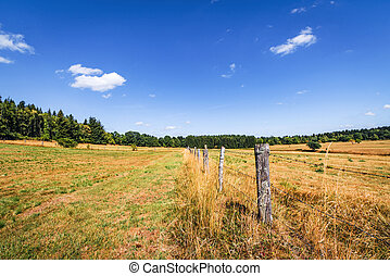 Rural scenery with a fence on dry land in the summer
