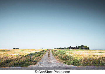Rural scenery with a road passing a small farm