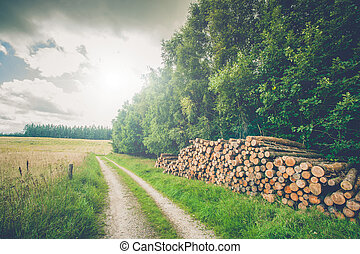Rural scenery with wooden logs