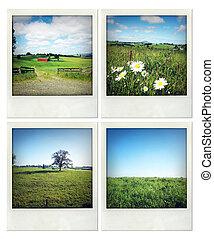 Rural scenes - Four photos of various rural scenes