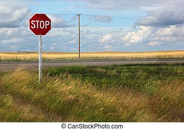 rural, sinal, parada, pradarias