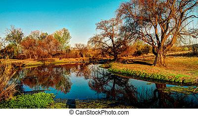 Rural South African landscape