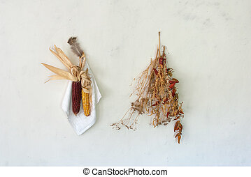 Rural still life, the cob dried red corn with a bundle of red pepper, dry grass and chicken feather hanging on the bleached wall in the farmhouse