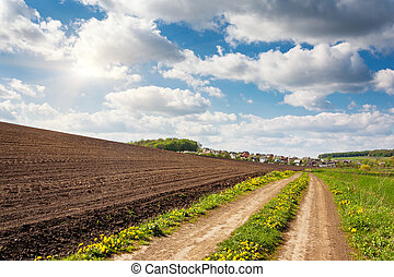 rural - Beautiful sunny day in the field with blue sky....