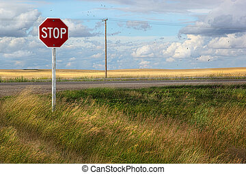 Rural stop sign on the prairies in Saskatchewan