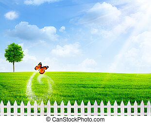 Rural summer abstract backgrounds
