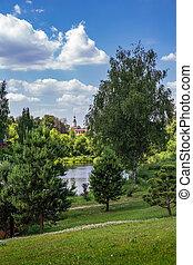 summer landscape with lake