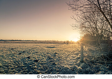 Rural sunrise in the winter with a frozen meadow