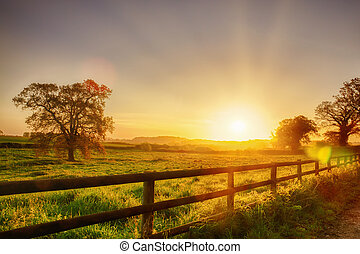 Rural sunrise over fenced field