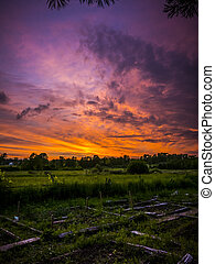 Rural Sunset View