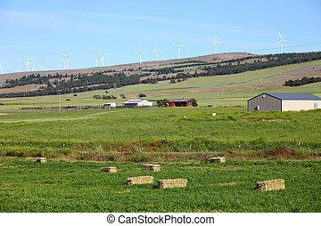 rural, tierras labrantío, turbines., viento