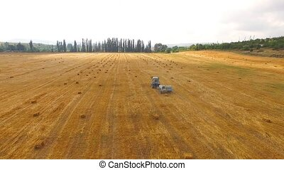 Rural Tractor Baling Hay In Stubble Field