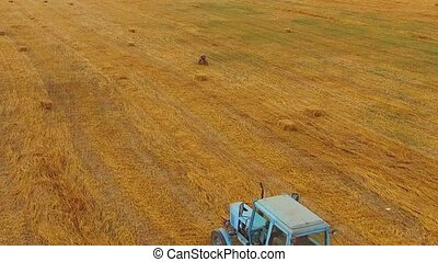 Rural Tractor Making Hay Bales In Stubble Field - This is an...
