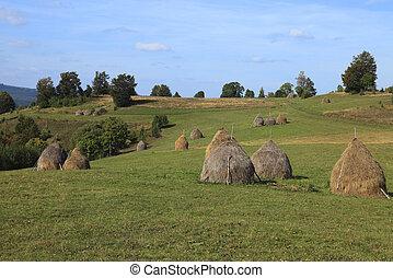 Rural Transylvanian landscape