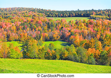 Rural Vermont in autumn time