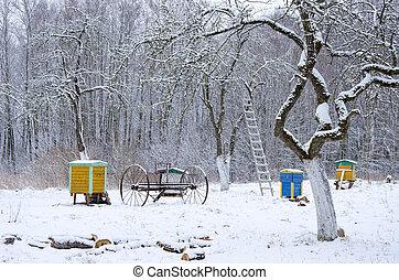 rural, vieux, jardin hiver, temps