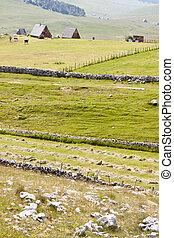 Rural view - Durmitor