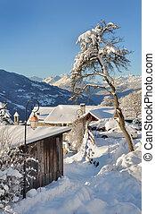 rural village in winter