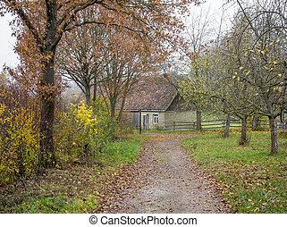 rural village scenery
