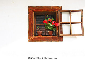 Rural window with red flower in a pot