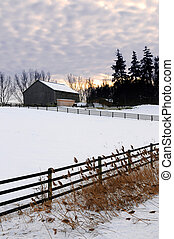 Rural winter landscape - Farm with a barn and horses in...