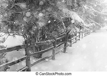Rural winter scene with fence
