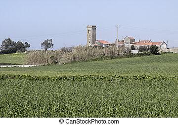 rurale, medievale, paesaggio