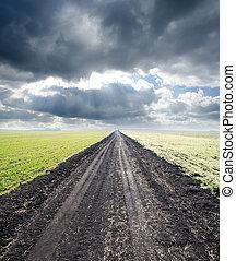 rurale, nebbia, strada, orizzonte, va