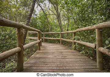 rurale, percorso legno, in, parco verde