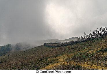 rurale, recinto, in, nebbia