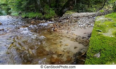 rushing creek in the forest, the streambed with stones