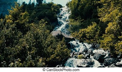 Rushing foamy water of the rocky waterfall in the forest