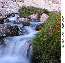 rushing mountain stream in Garnet Canyon, Grand Teton National Park with silky water from long exposure