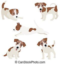 russell, chien, illustration, vecteur, cric, terrier.