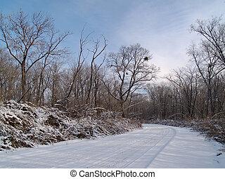 russia., 木頭, 晚上, 冬天, 路