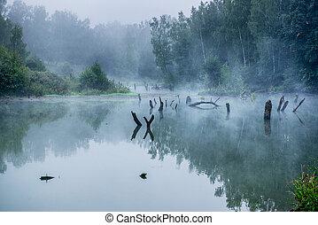 russia., brumeux, petit, rivière, matin