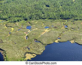 Russia. Norh of Siberia. Like