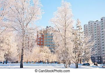 russia., slaapzaal, winter, moskou