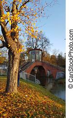 Chinese bridge in the autumn park in Pushkin
