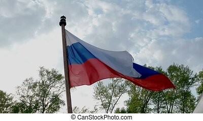 Russian flag waving in the wind over blue sky and top of trees