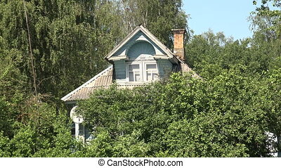 Russian wooden house in thickets.