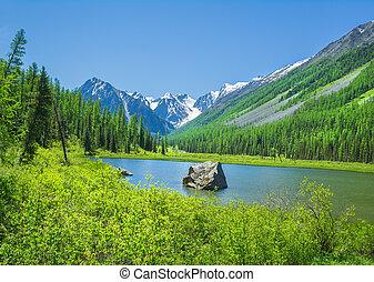 russo, montanha, altai, paisagem