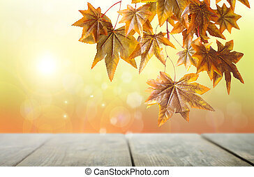 Rustic autumn backdrop