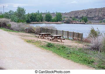 rustic bench on the shore of a lake with green area