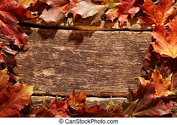 Rustic border of colorful autumn leaves