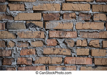 Rustic brick wall / background