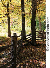 Rustic fence in woods - Pretty length of rustic fence that...