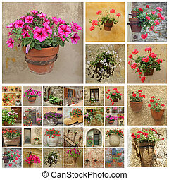 rustic flower pots collage, Italy, Europe