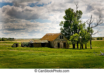 Rustic Old Homestead in Middle of field in ND
